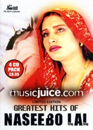 Greatest Hits Of Naseebo Lal (4 CD Set)
